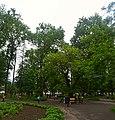 Парк-сквер DSC 0138 stitch.jpg