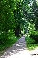 Парк Берёзовая роща в Киеве. Фото 9.jpg