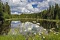 Река Лавра в Верхошижемском районе Кировской области.jpg