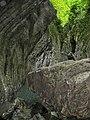 Сочинский национальный парк. Свирское ущелье 2.jpg