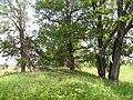 Суходол - panoramio (13).jpg
