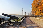 Чернигов Пушка на Валу 2014.jpg