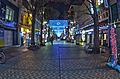 伊勢佐木町2014年1月2日(木).jpg