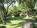 南山寺风光 - panoramio (16).jpg