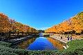 昭和記念公園 - panoramio (35).jpg