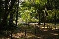 東高根森林公園 - panoramio (18).jpg