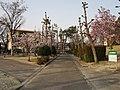 田宮運動公園.jpg