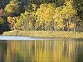 秋の水面 - panoramio.jpg