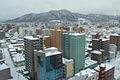 雪の札幌 (2309865359).jpg