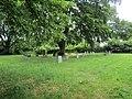 -2020-06-09 Churchyard, Saint Andrew parish Church, Metton, Norfolk (2).JPG