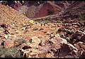 003 Grand Canyon Aerial of Burro Damage 1975 (4951574377).jpg