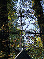 041012 Sculpture and architectural detail at the Orthodox cemetery in Wola - 31.jpg