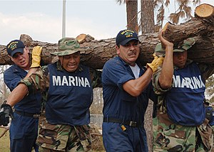Naval Infantry Force - Mexican marines and U.S. Navy sailors from amphibious assault ship USS Bataan (LHD 5) cleaning up debris following the aftermath of Hurricane Katrina in D'Iberville, Mississippi in 2005