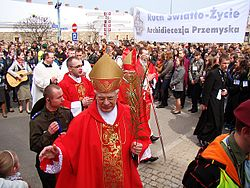 05354 Palm Sunday in Sanok.JPG