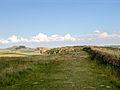 08-Hadrians Wall-034.jpg