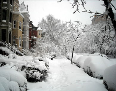 1600 block of 19th Street, N.W. - 2010 blizzard.JPG
