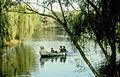 1983 in Jiangsu, Chinese garden-8.jpg
