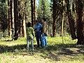 2010. Forest entomologists (l-r) Laura Lazarus, Don Scott, and Bruce Hostetler examining pine butterfly defoliation. Eastern Oregon. (36773093884).jpg