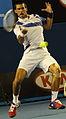 2011 Australian Open IMG 0042 2 (5444728754).jpg