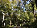 2013-08-25 12 03 47 View northeast near 50 Ridge Road at Spring Lake in Berlin, New York - horizontal alignment.jpg