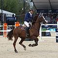 2013 Longines Global Champions - Lausanne - 14-09-2013 - Niklaus Rutschi et Windsor XV 2.jpg