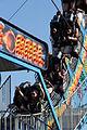 2013 Virginia State Fair (10111457266).jpg