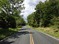 2014-08-28 11 45 27 View west along Taborton Road (Rensselaer County Route 42) about 3.1 miles east of New York State Routes 43 and 66 in Sand Lake, New York.JPG