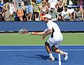 2014 US Open (Tennis) - Tournament - Igor Sijsling (14911769489).jpg