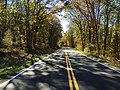 2016-10-25 12 10 33 View south along Shenandoah National Park's Skyline Drive just south of the Beahms Gap Overlook on the border of Page County, Virginia and Rappahannock County, Virginia.jpg