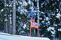2017 Audi FIS Ski Weltcup Garmisch-Partenkirchen Damen - Sofia Goggia - by 2eight - 8SC9248.jpg