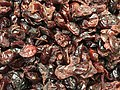 2020-04-23 19 21 13 Dried cranberries in the Franklin Farm section of Oak Hill, Fairfax County, Virginia.jpg