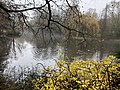 2020-12-12-Hike-to-Rheydt-Palace-and-its-surroundings.-Foto-48.jpg