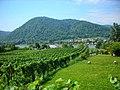 3601 Dürnstein, Austria - panoramio (1).jpg