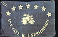 3rd Florida Infantry, Company B, Civil War Battle Flag.png
