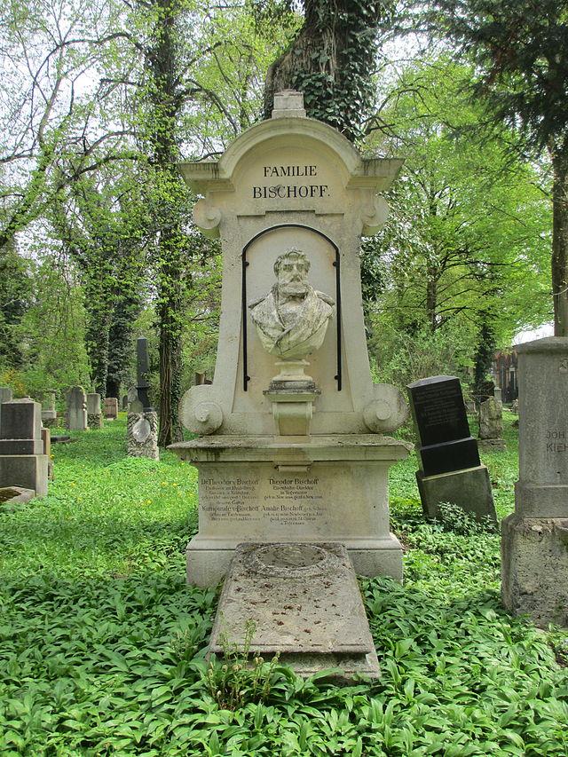 Theodor von Bischoff - Wikiwand