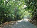 5Valpara Road2.JPG