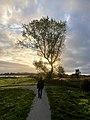 6856.Haansvaart.Schildmeer.Natuurgebied.Vossenbult.Heerenhuisweg.Sans.Souci.Steendam.jpg