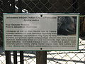 A Silesian Zoological Garden 8.JPG