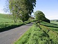 A country road - geograph.org.uk - 440912.jpg