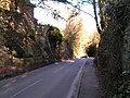 A sunken Lane - geograph.org.uk - 133341.jpg