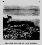 Abalone shells Nicoleño.png