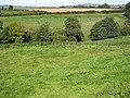 Across Llanerch Brook - geograph.org.uk - 991369.jpg