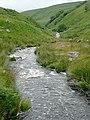 Afon Doethie Fawr below Blaendoethie, Ceredigion - geograph.org.uk - 1421732.jpg