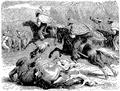 Aimard - Les Chasseurs d'abeilles, 1893, illust page 188.png