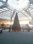 Airside 4 Christmas Tree (31138204352).jpg