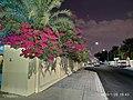 Al Houriya Street in Lejbailat.jpg