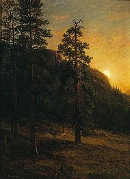 Albert Bierstadt - California Redwoods.jpg