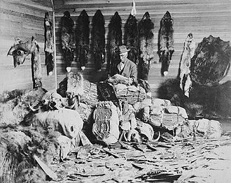 Fur trade - A fur trader in Fort Chipewyan, Alberta in the 1890s