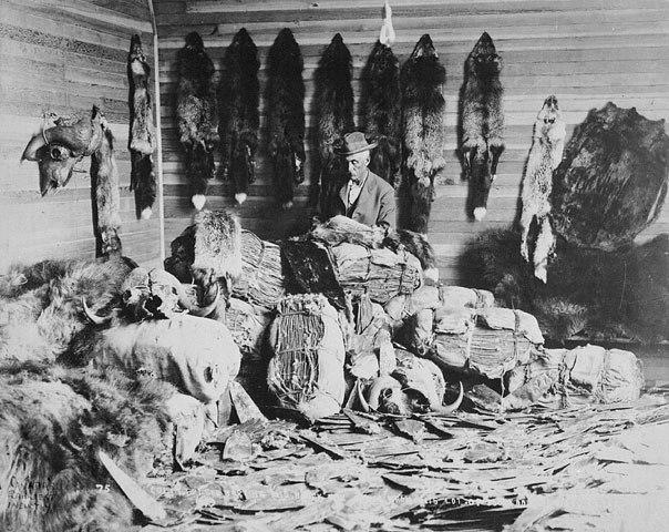 Alberta 1890s fur trader