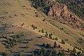 Aldridge Mountains Sunset-Malheur (23905519396).jpg